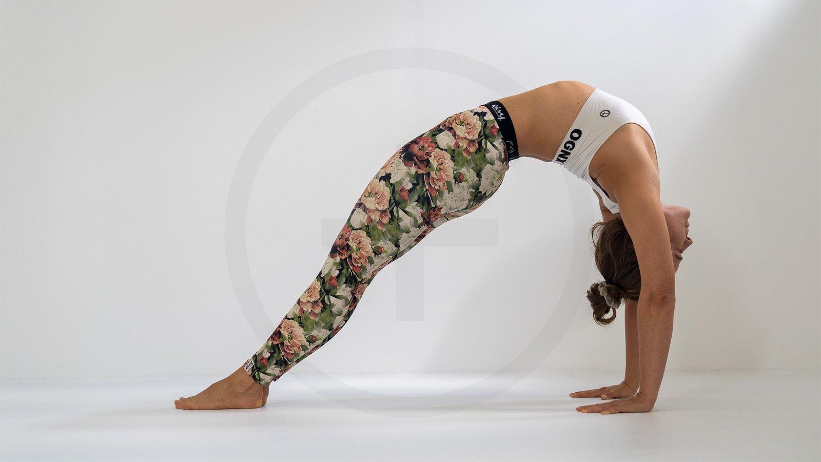 Die (5) Elemente – Vinyasa Yoga Special am 01.11.