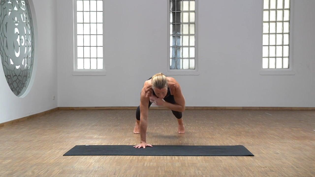 Schulterkraft 02 – Plank Tap